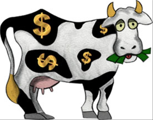 Image result for Image of the cash cow